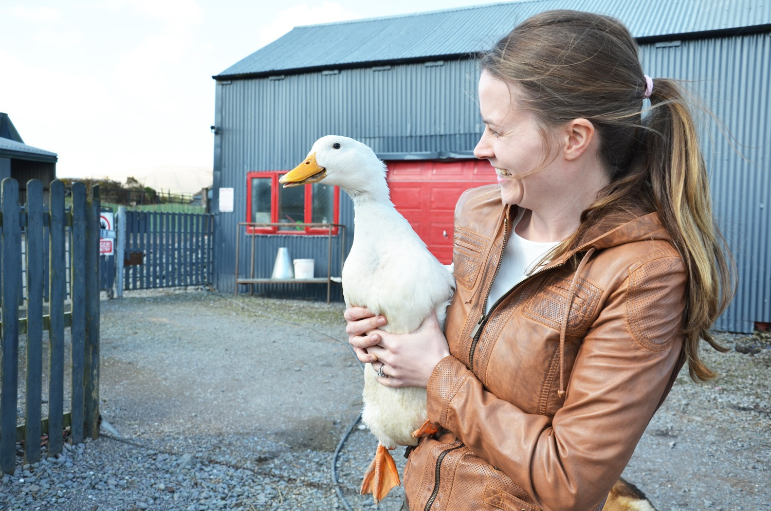 Supplier Focus: O'Connell's Poultry Farm