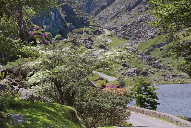Summer in the Gap of Dunloe
